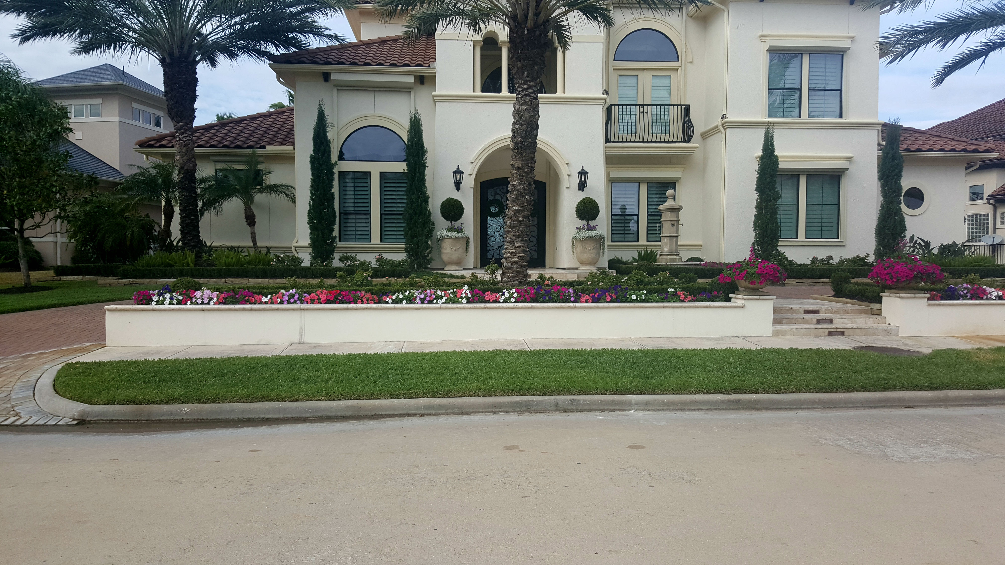 front yard design, Mediterranean, petunias