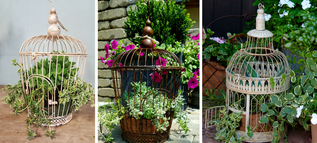 birdcages, planters, unique planters, christmas gifts