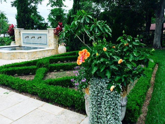 boxwood, borders, parterre, formal garden